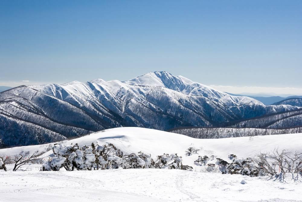 Great Alpine Road
