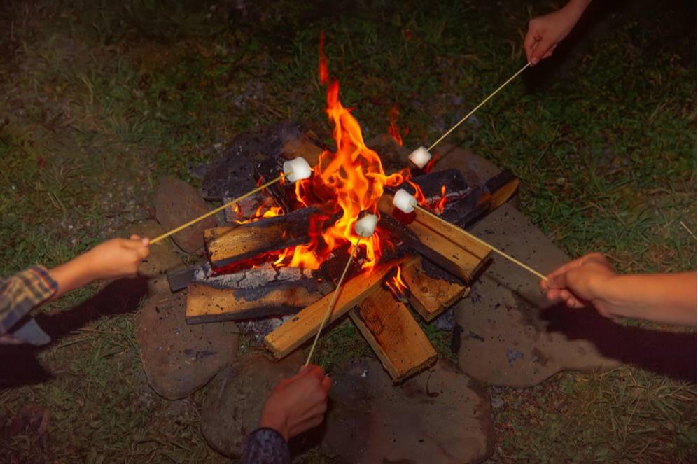 Top 5 Tech-Free Camping Tips